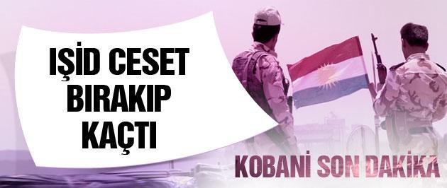 Kobani son dakika IŞİD ceset bırakıp kaçtı