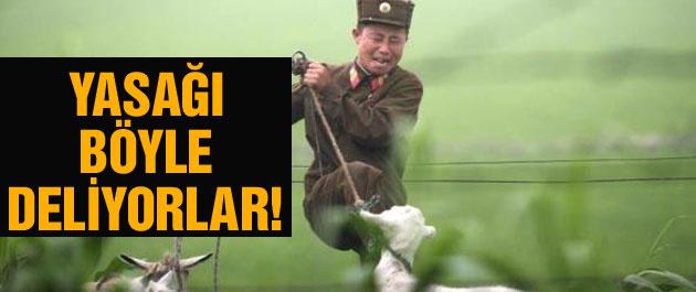 Kuzey Kore'yi işte böyle gözetliyorlar!