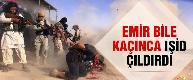 IŞİD son dakika Kobani'de kaçanı vuruyor