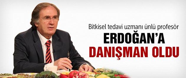 Saraçoğlu Erdoğan'ın danışmanı oldu