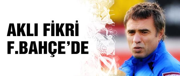 Ersun Yanal'ın gündemi Fenerbahçe