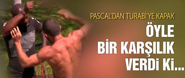 Survivor Turabi'ye Pascal böyle kapak attı