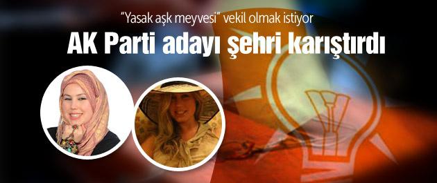 AK Parti adayı Bitlis'i karıştırdı!