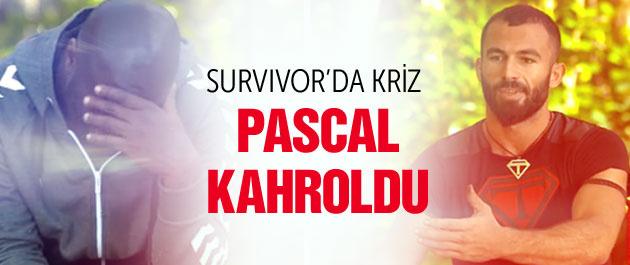 Survivor All Star'da kriz Pascal kahroldu