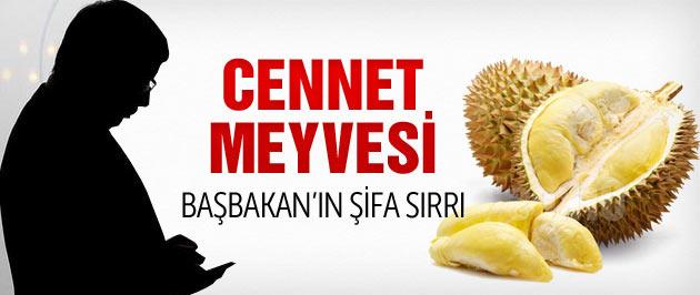 Başbakan'ın şifa sırrı Durian nedir?