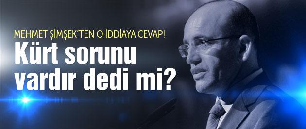 Mehmet Şimşek 'Kürt sorunu vardır' dedi mi?