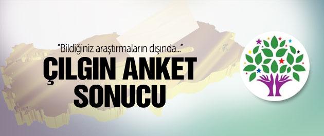 Seçim anketi yaptıran HDP'nin çarpıcı oy oranı