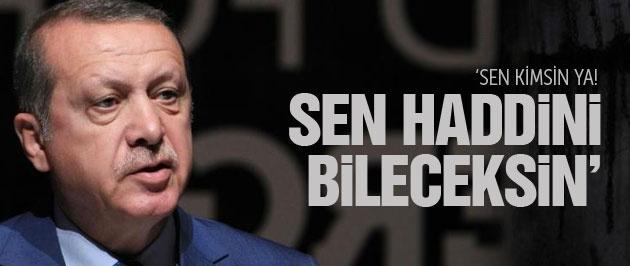 Erdoğan'dan New York Times'a 'Haddini bil' mesajı