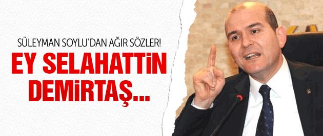 Süleyman Soylu: Demirtaş bize vız gelir!
