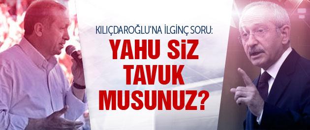 Erdoğan'dan Kılıçdaroğlu'na: Sen tavuk musun?