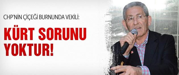 CHP'li yeni vekil: Kürt sorunu yoktur!