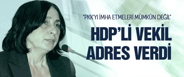 HDP'li vekil operasyon sonrası adresi gösterdi!