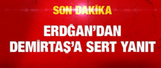 Erdoğan'dan Demirtaş'a çok sert Suruç yanıtı