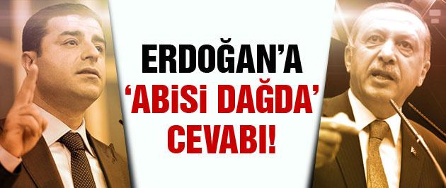 Demirtaş'tan Erdoğan'ın iddiasına flaş cevap!