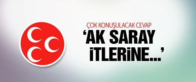 MHP: Ak Saray itlerine kuduz aşısı yaptırsın!