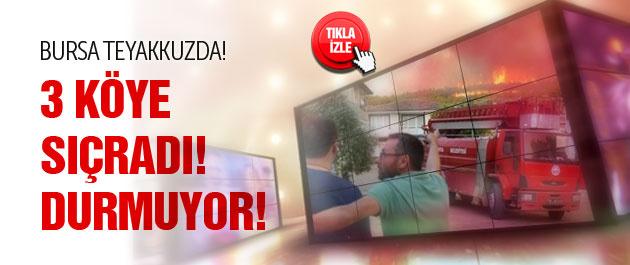 Bursa'da dev yangın 3 köye sıçradı!