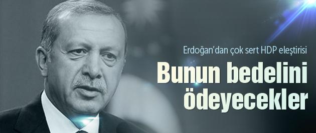 Erdoğan'dan çok sert HDP eleştirisi!