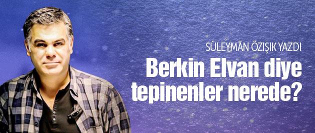 Berkin Elvan diye tepinenler nerede?