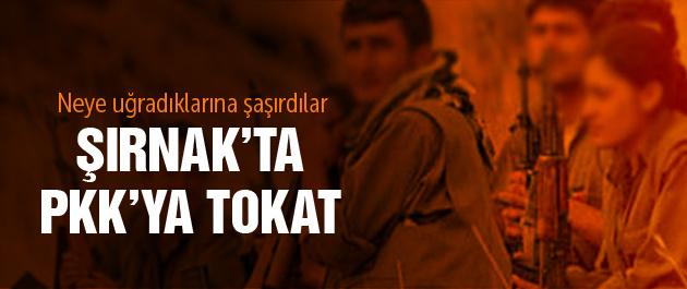 PKK'lı teröristlere vatandaş tokatı!
