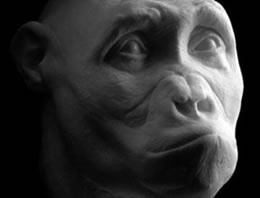 Yeni bir insan soyu mu keşfedildi?