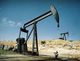 Hem doğalgaz hem petrol çıktı!