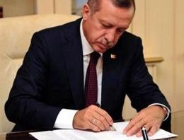 Cumhurbaşkanı Erdoğan teşkilata el attı