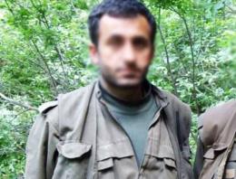 PKK'nın üst düzey ismi yakalandı!