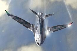 Yetkililer alarma geçti! Uçaklar için büyük tehlike