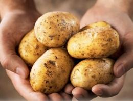 Patateste büyük vurgun