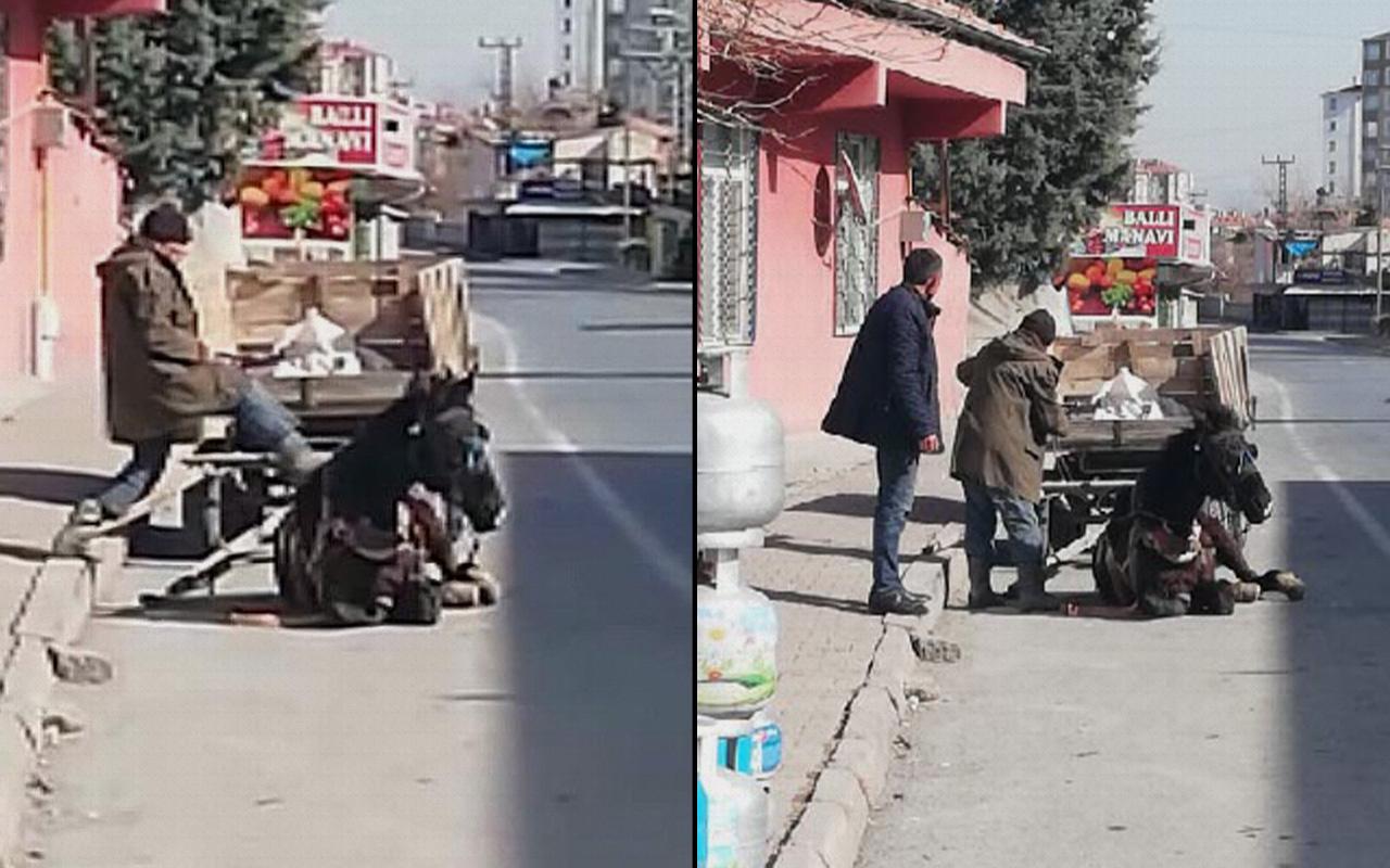 Kayseri'de vicdansızlık: Yorgunluktan yere çöken atını tekmeledi!
