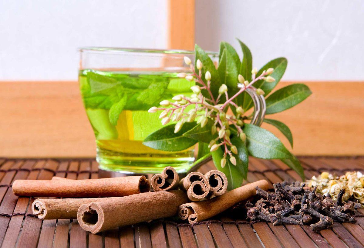 Bitki çayı felç kalmanıza neden olabilir! Faydası saymakla bitmiyor ama... - Sayfa 1
