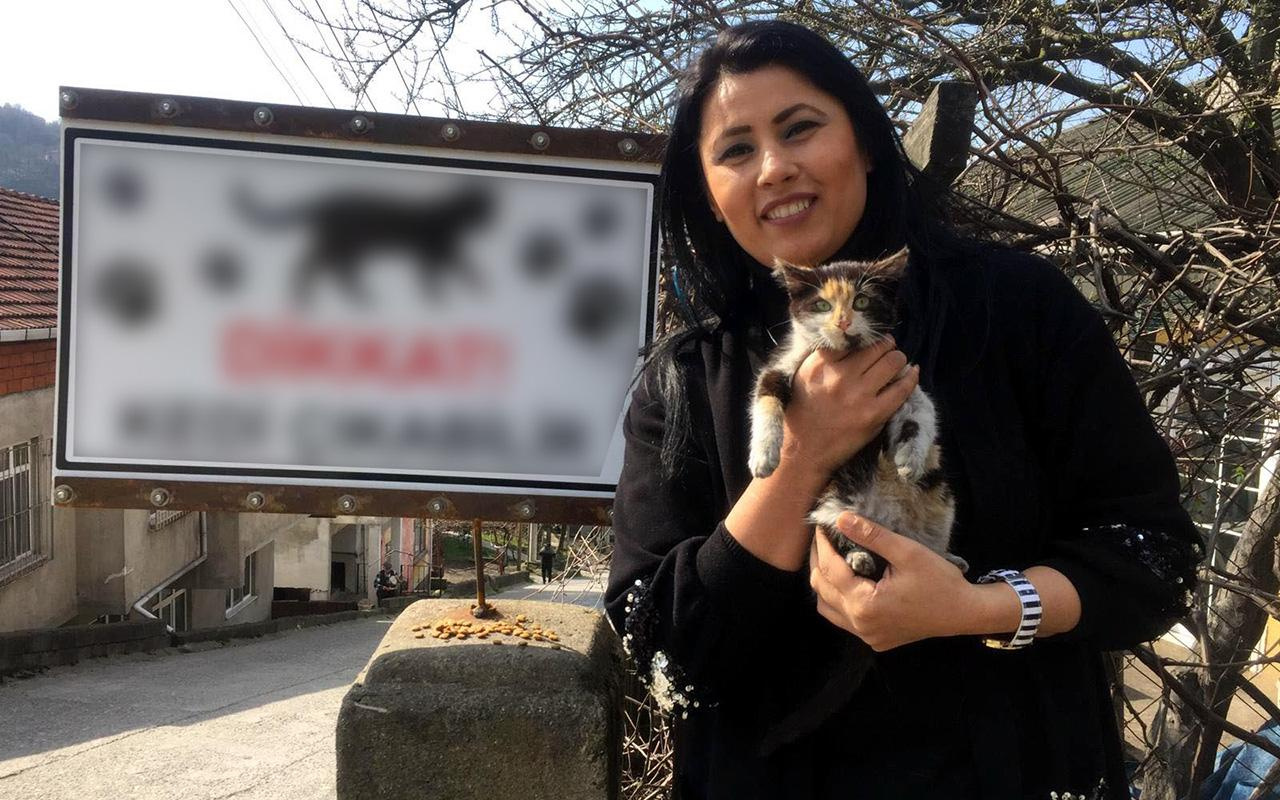 """Zonguldak'ta sürücüler için """"Dikkat kedi çıkabilir"""" tabelası astı"""