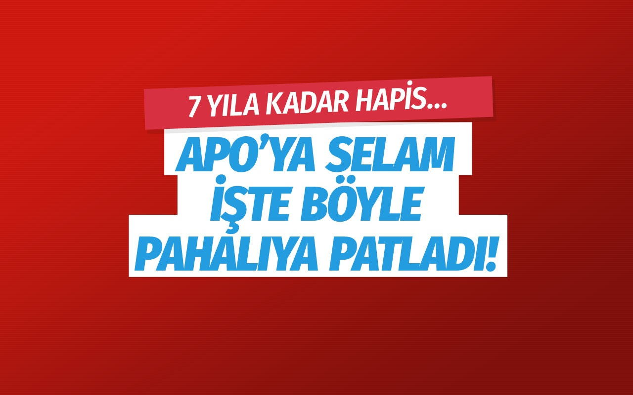 HDP'li Sibel Yiğitalp'e 7 yıla kadar hapis istemi!