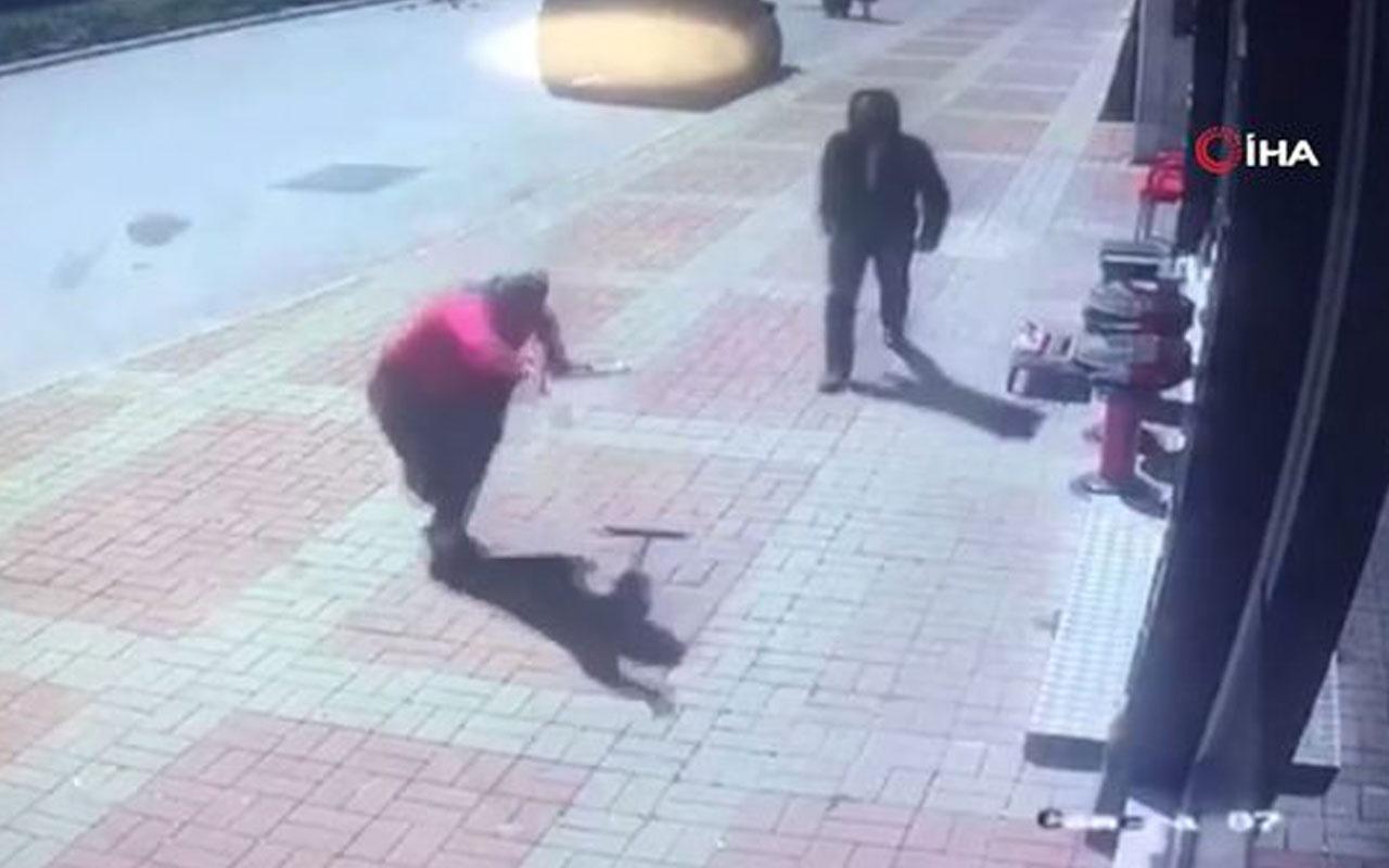 Kasap önünde bekleyen köpeğe parke taşı attı