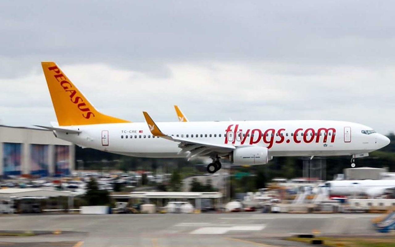 Pegasus'tan 150 pilot istihdamı