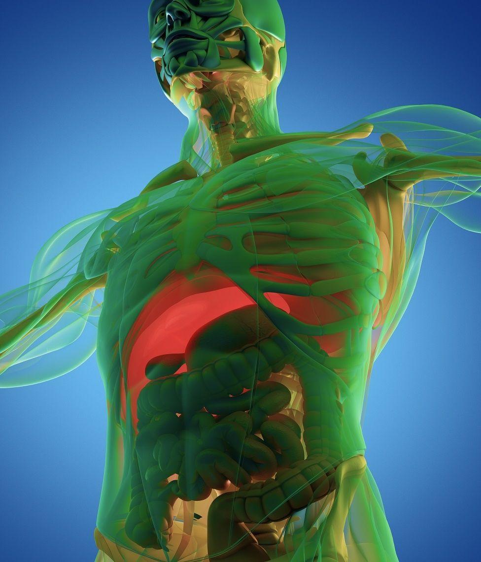 Oruç tuttuğunuzda vücudunuzda neler olur?