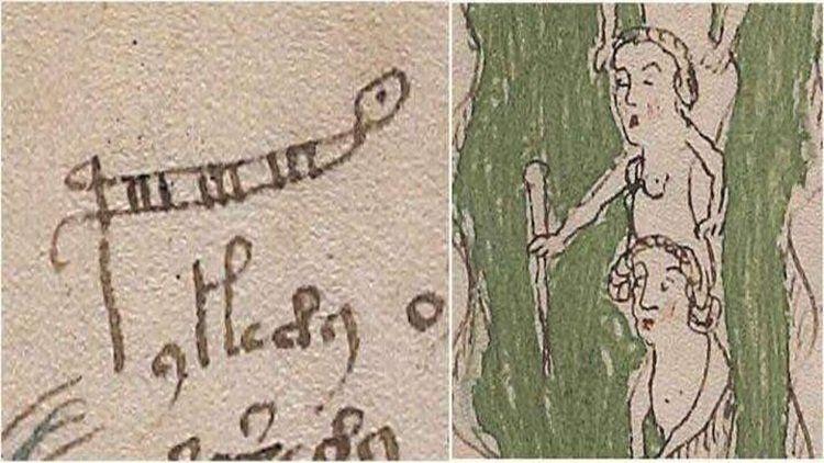 Dünyanın en gizemli kitabı Voynich El Yazması'ndan seks tavsiyesi çıktı! - Sayfa 4