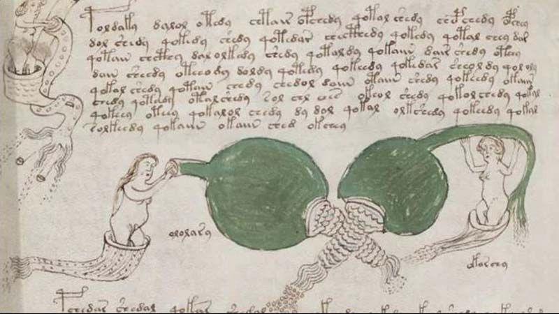 Dünyanın en gizemli kitabı Voynich El Yazması'ndan seks tavsiyesi çıktı! - Sayfa 7