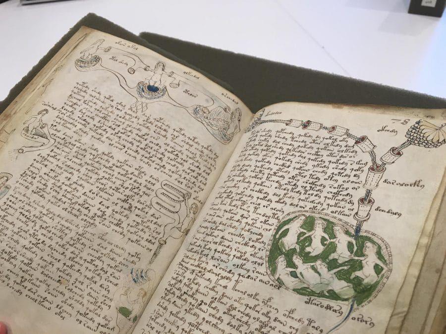 Dünyanın en gizemli kitabı Voynich El Yazması'ndan seks tavsiyesi çıktı! - Sayfa 9