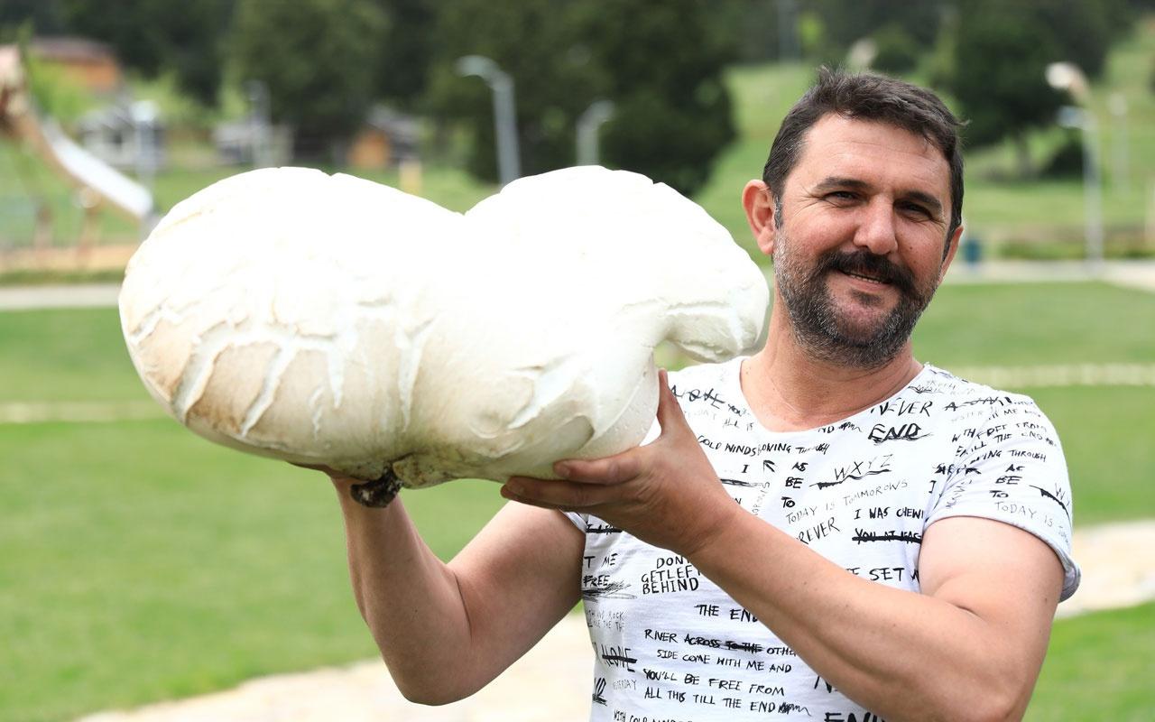 Bin 500 rakımda 7 kiloluk dev mantar şaşırttı