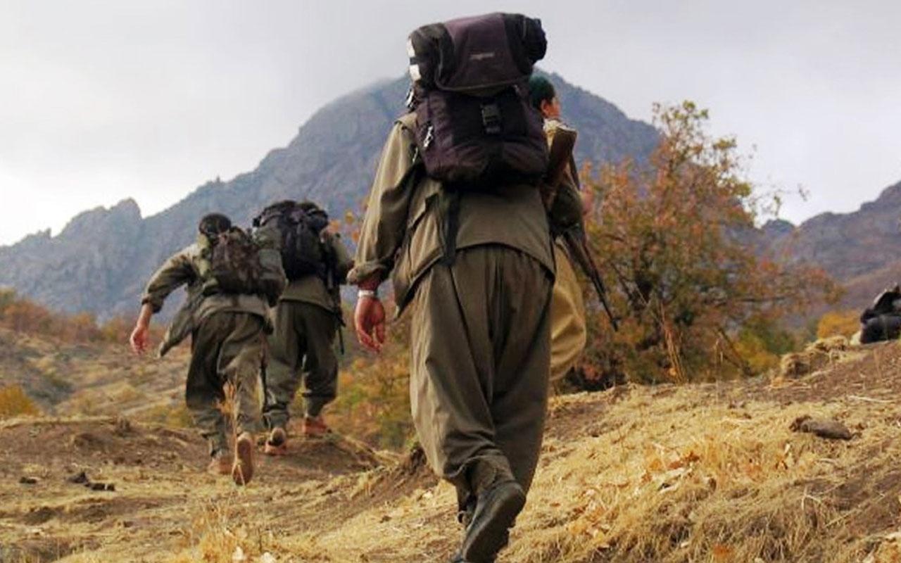 PKK'da çözülmeler devam ediyor 2 kişi teslim oldu