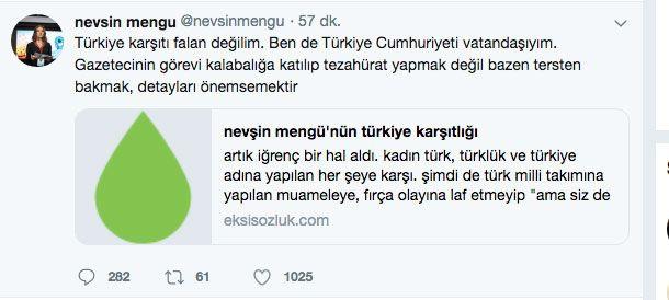 Nevşin Mengü'nün İzlanda skandalı tweeti olay oldu - Sayfa 7