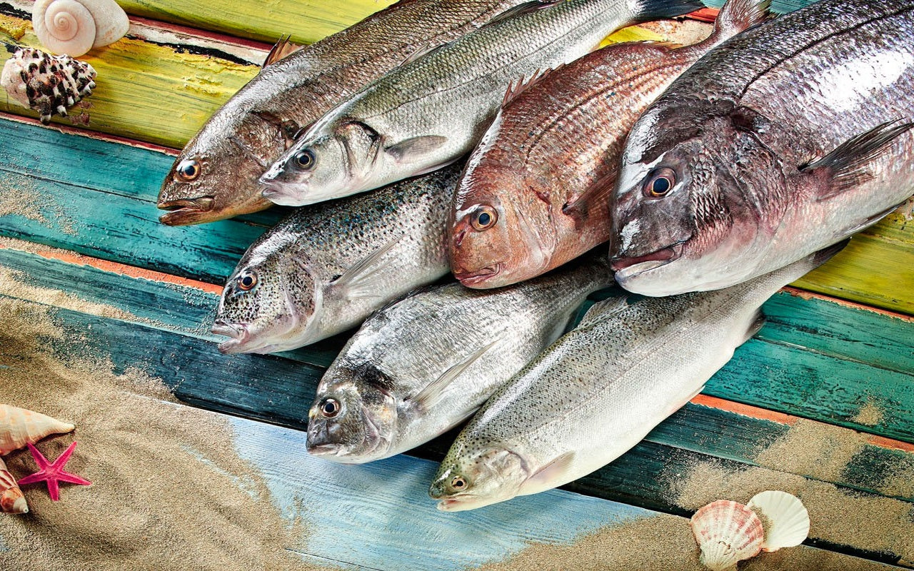 TÜİK verilerine göre balık üretimi yılda %10,6 azaldı