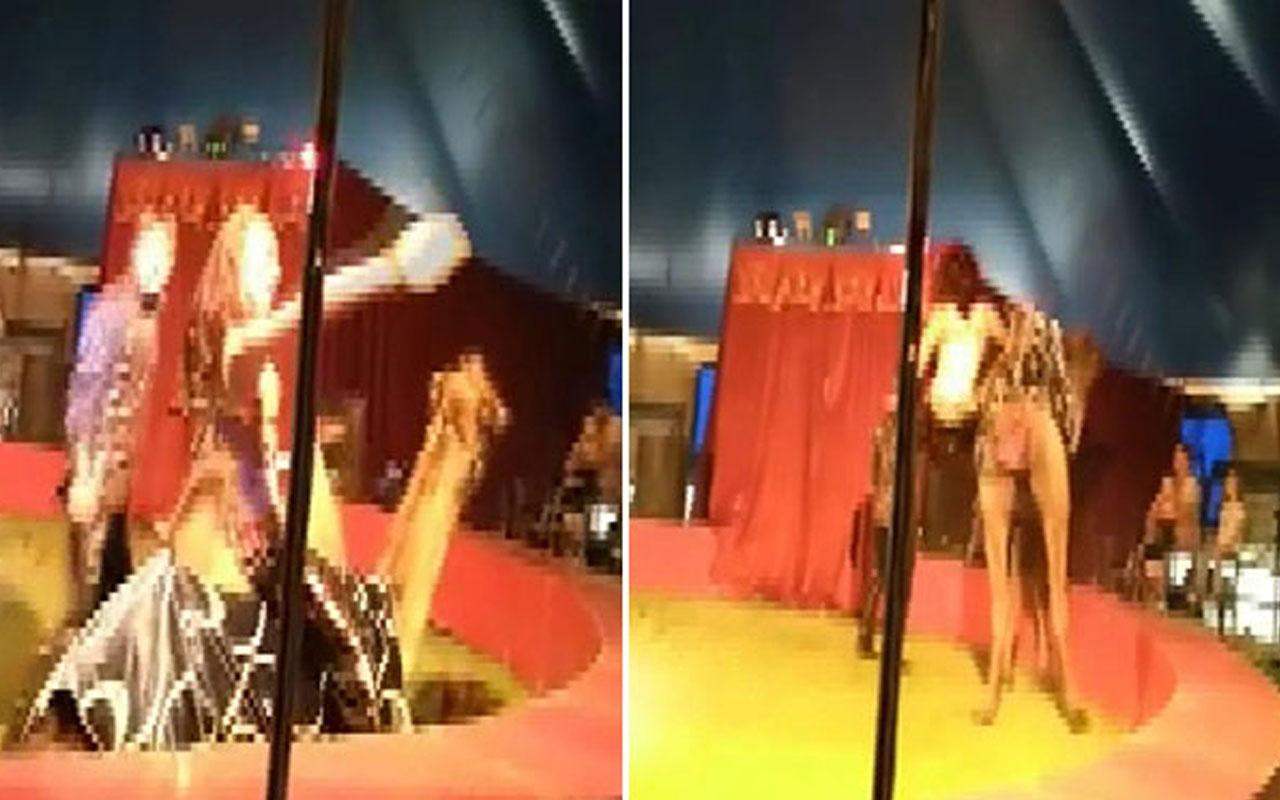 Sirk gösterisinde kötü son! Eğitmen devenin üzerinden düştü