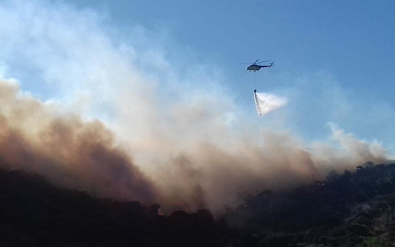 İzmir'de yazlık sitelerin yanında korkutan yangın