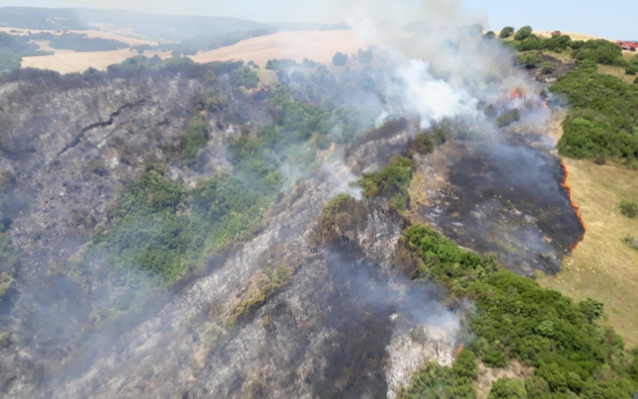 Gelibolu'da orman yangını! Kontrol altına alındı