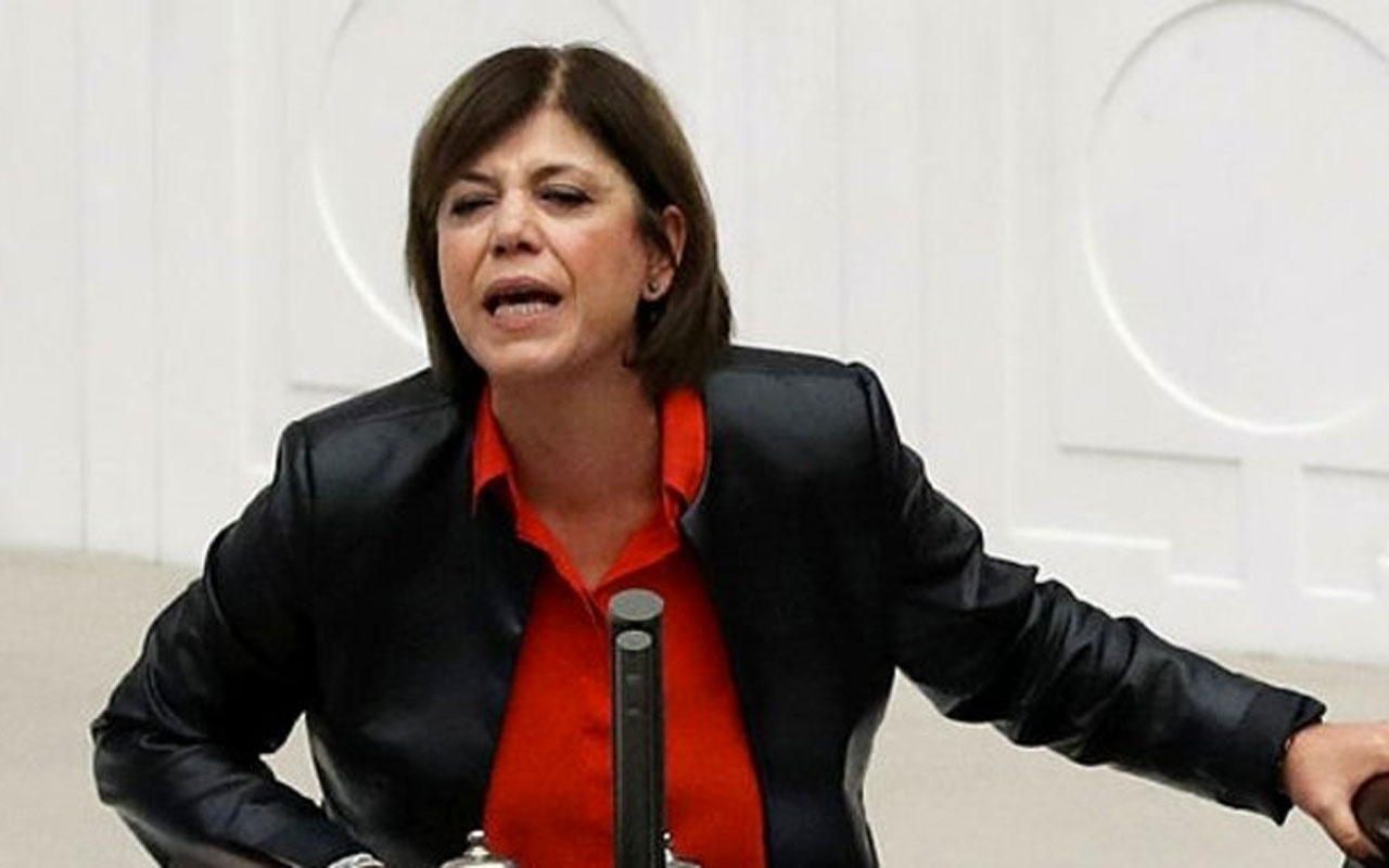 HDP Siirt Milletvekili Meral Danış Beştaş İYİ Parti'ye yüklendi