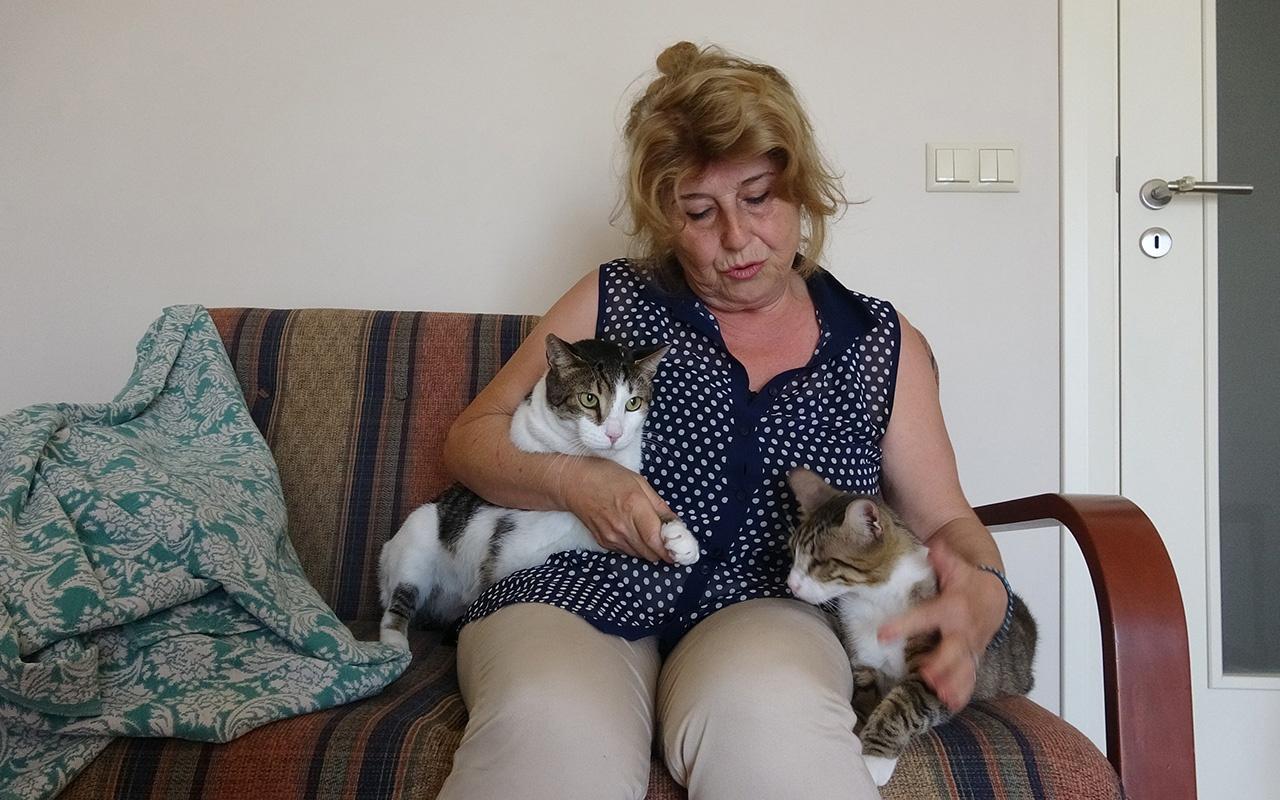 Kocaeli'de bir hayvansever komşusunun şikayetiyle evinden oldu