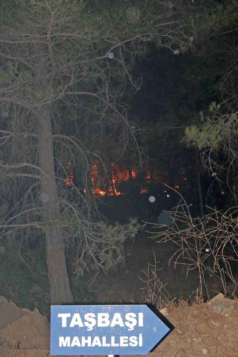 Muğla'daki orman yangınında 34 ev tahliye edildi - Sayfa 1