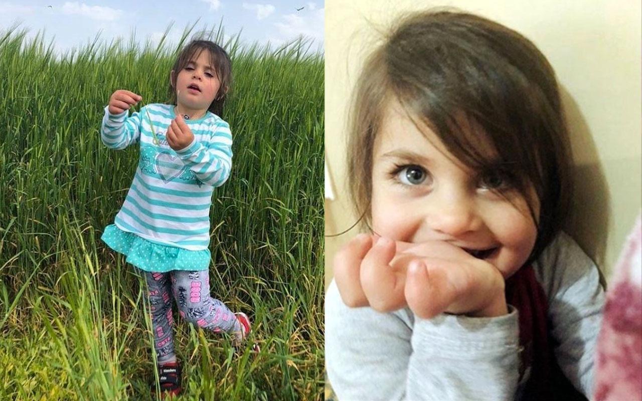 Ağrı'da cansız bedeni bulunmuştu! Minik Leyla Aydemir'in ailesine yapılan DNA testi sonuçları